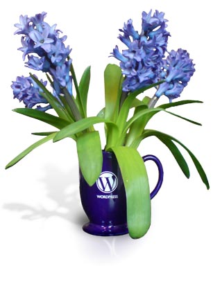 A WordPress mug makes a great vase