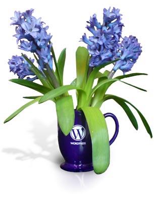 A WordPress mug makes a great vase